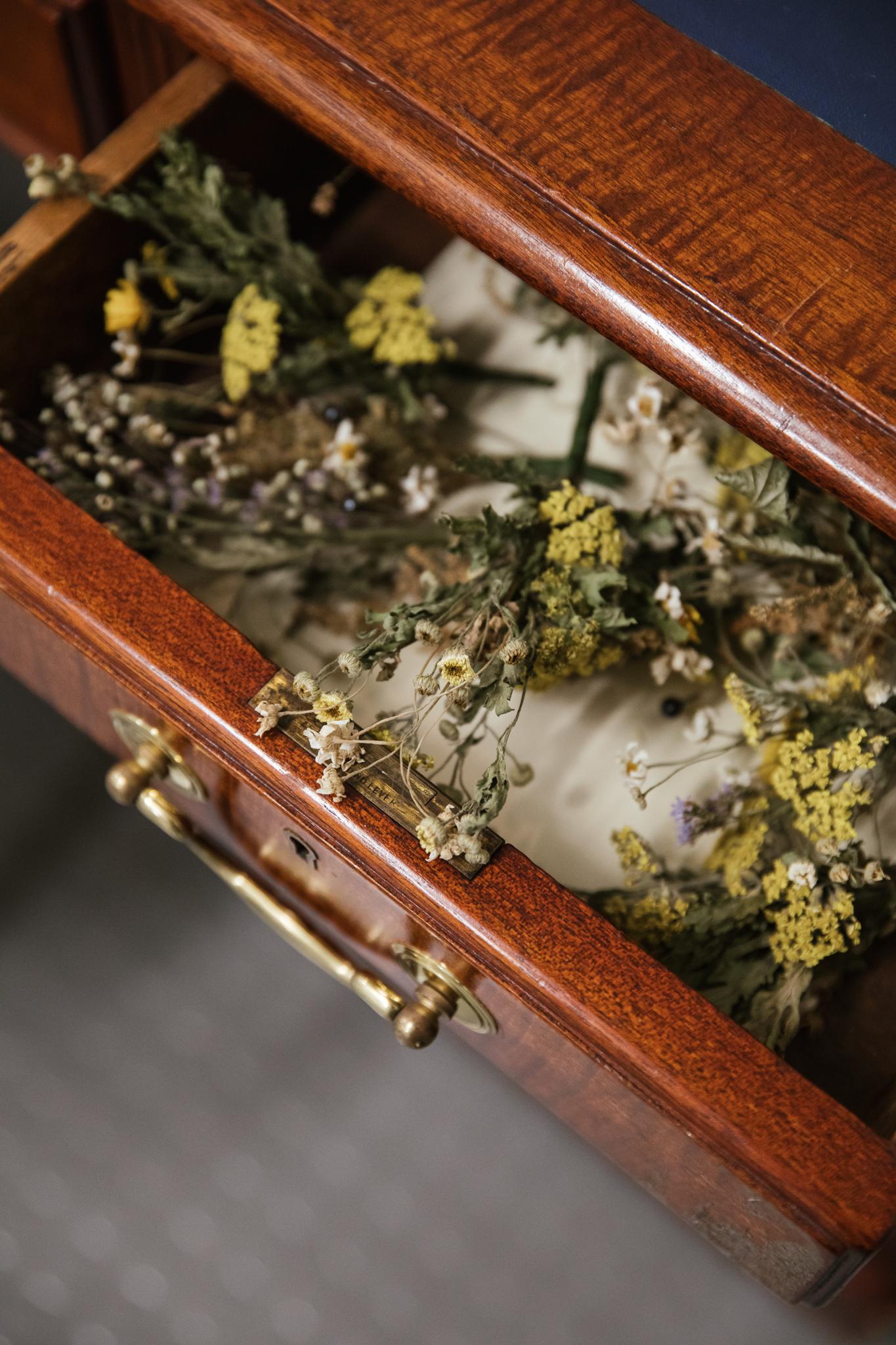 Herbarium_Joanne-Crawford-6812.JPG