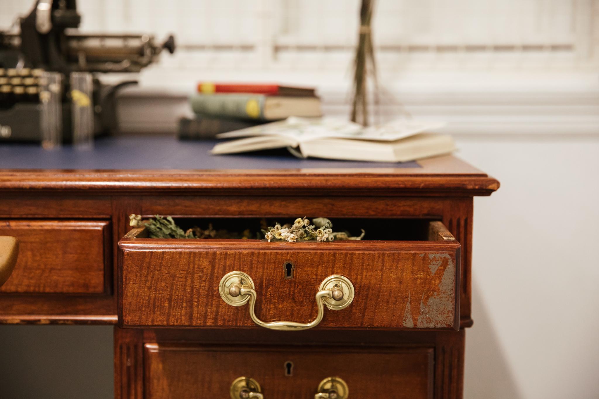 Herbarium_Joanne-Crawford-6817.JPG