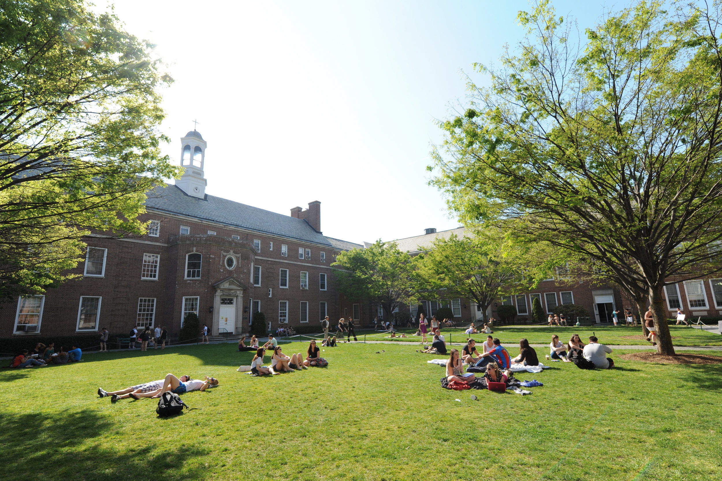 Manhattan College - Programs Offered: Undergraduate | Postgraduate | IELP (Intensive English)