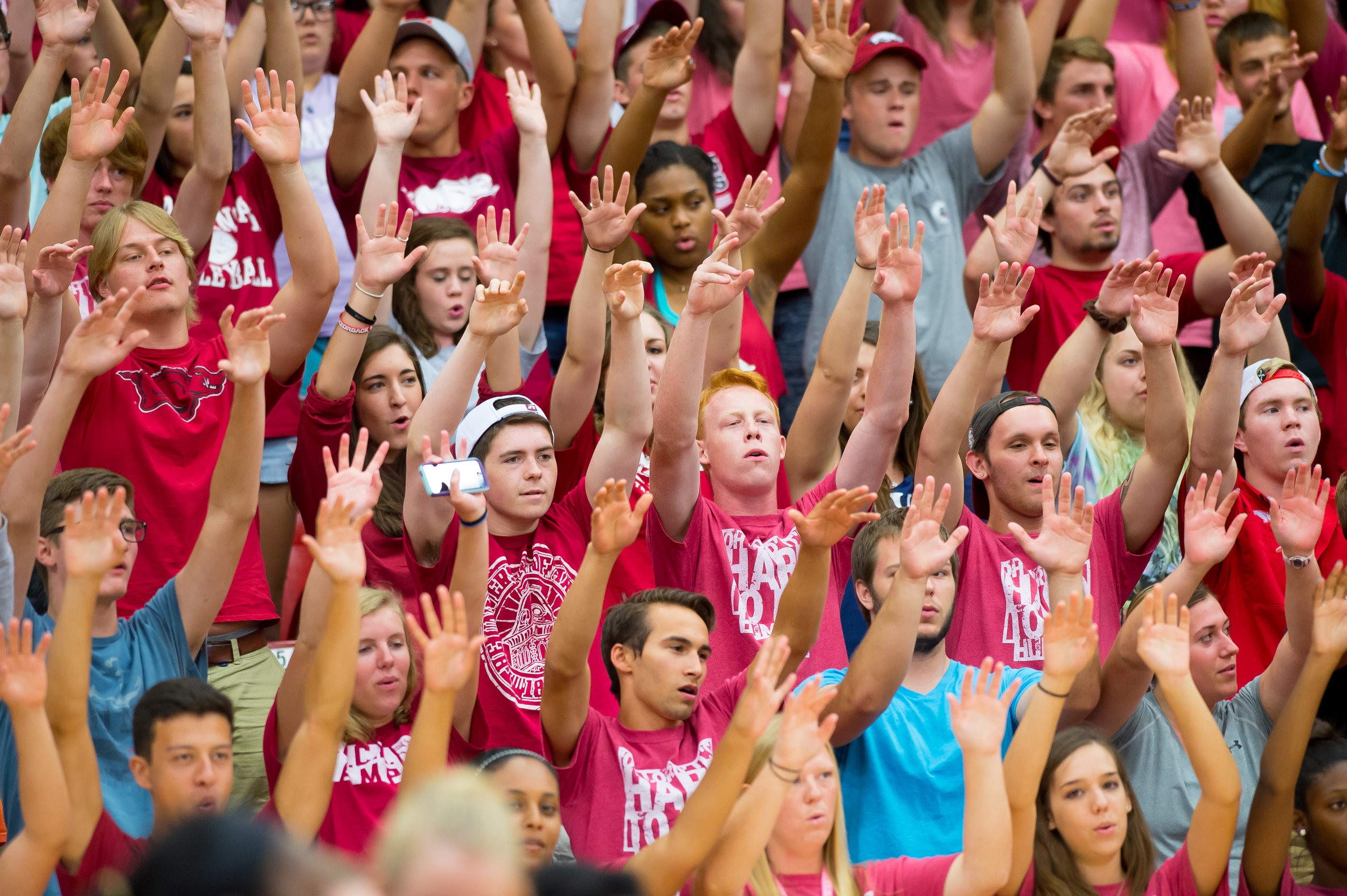 Fans Crowd Barnhill VB 2015-0290.jpg