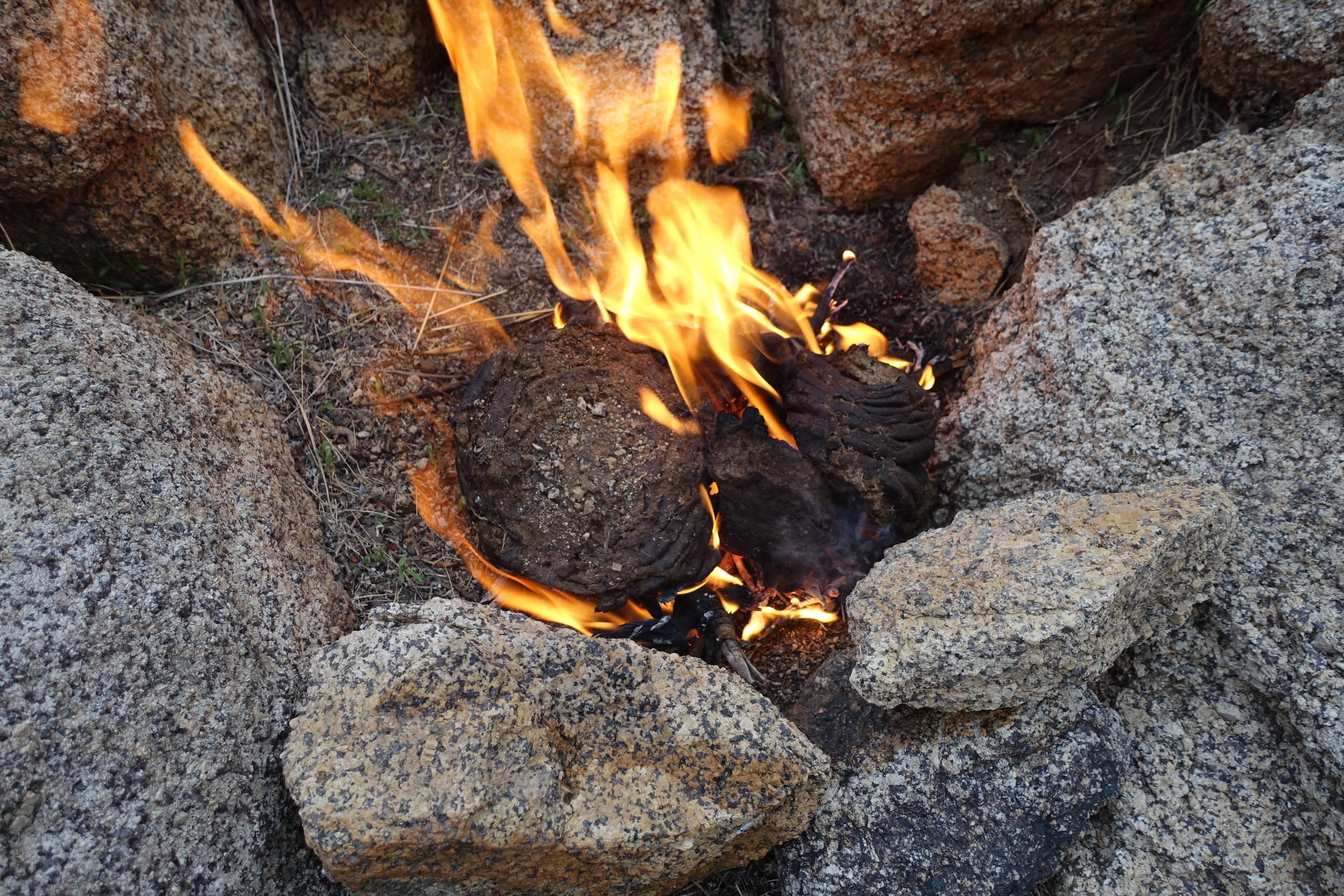 Nomads burn dung to make guest gers warm:an exemple of their tradition to efficiently use ressources.