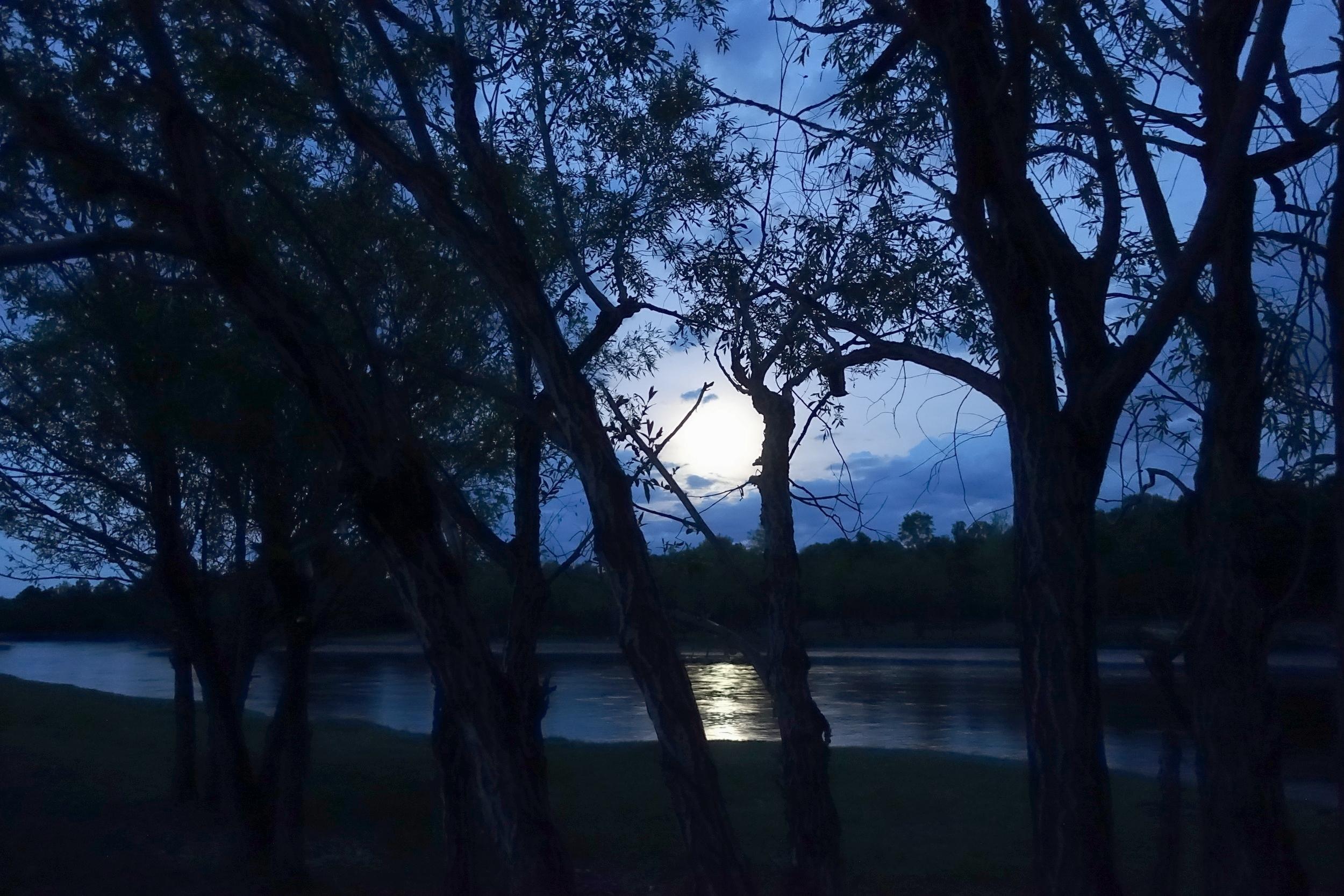 6 unforgettable moonlit nights spent in tents in the Terelj national park