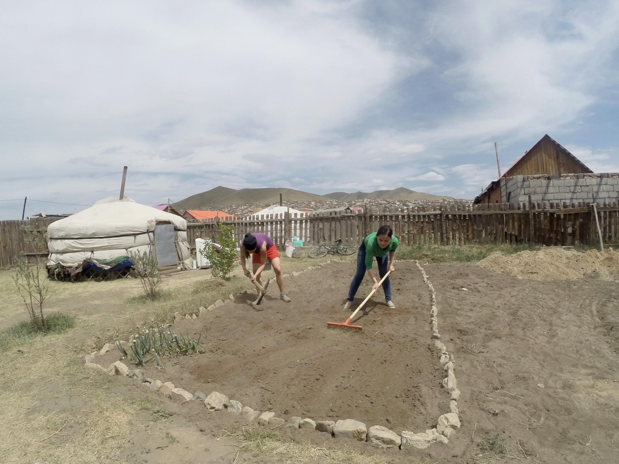 1 week of hard work to prepare the new garden