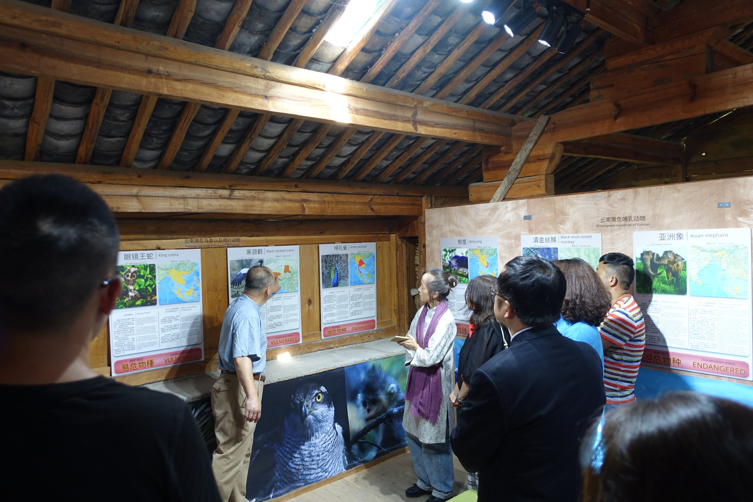 Yongsong Chen is guiding the visitors through the exhibition