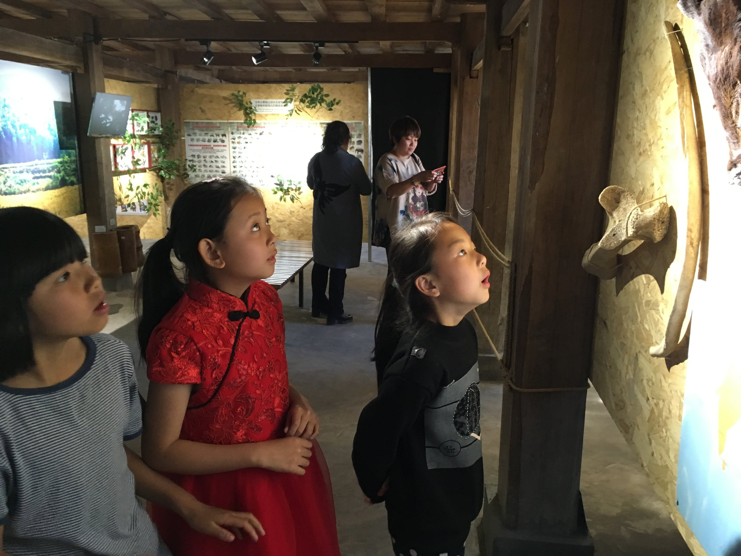 3-2 Children look at elephant bones at Section2 of the museum.JPG