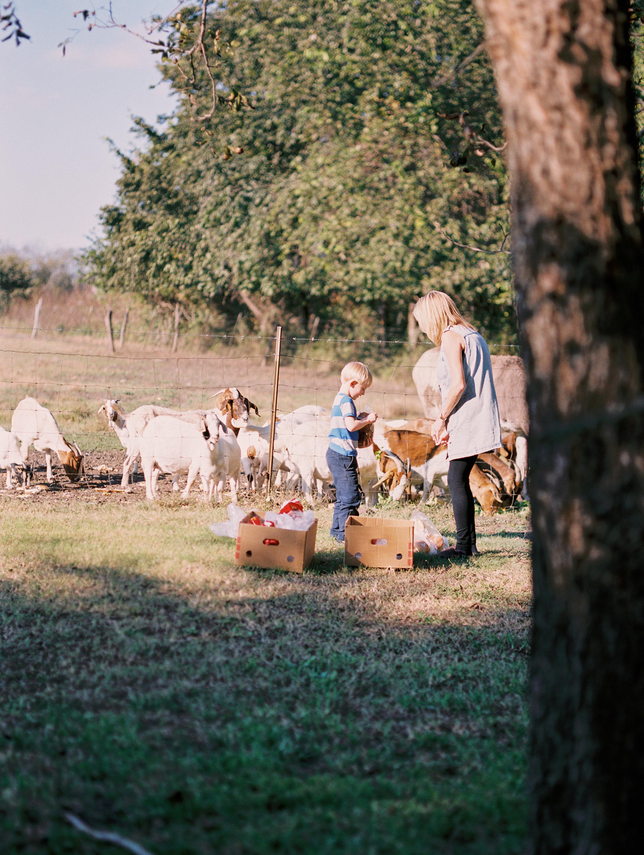 waco lorena texas wedding photos