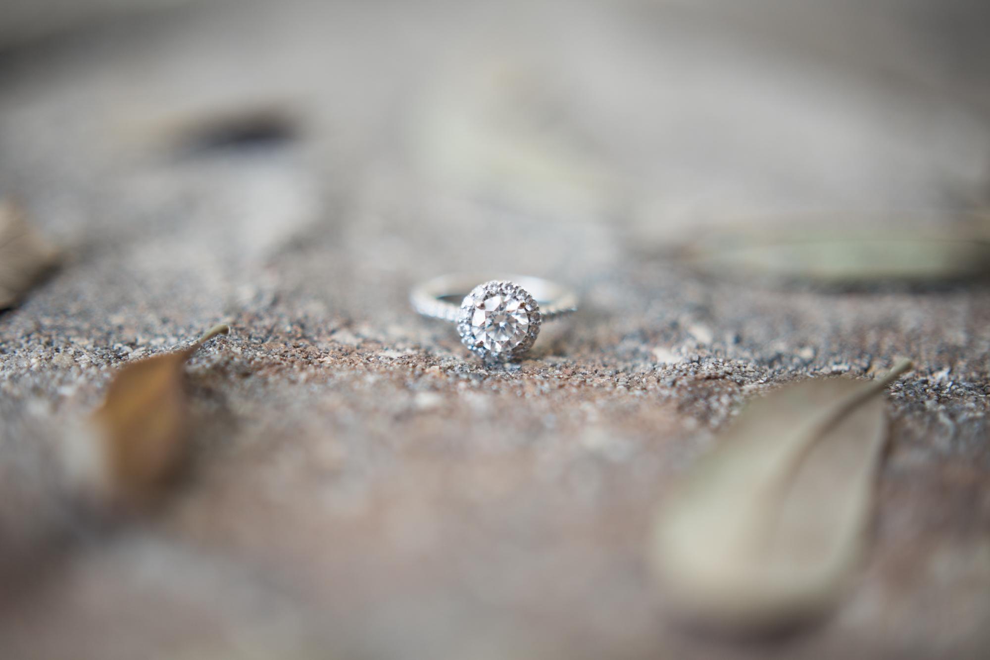 up the creek farms malabar fl engagement and wedding photos ring