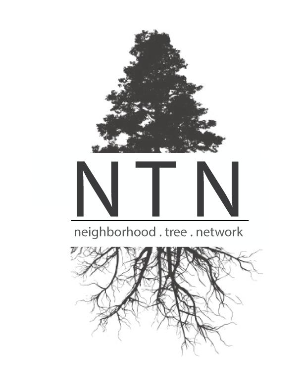 NTN-Logo-2.png