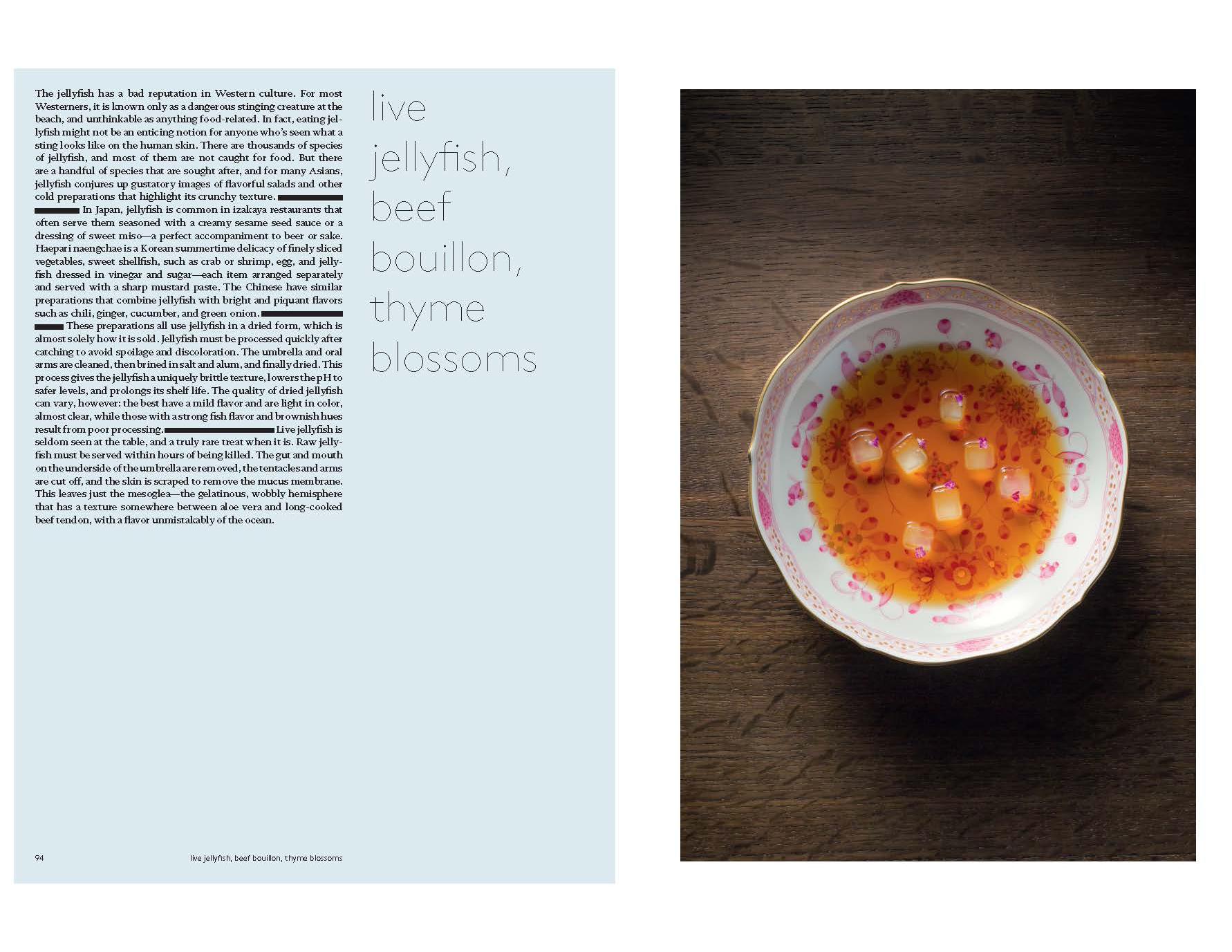 cookbook_jellyfish.jpg