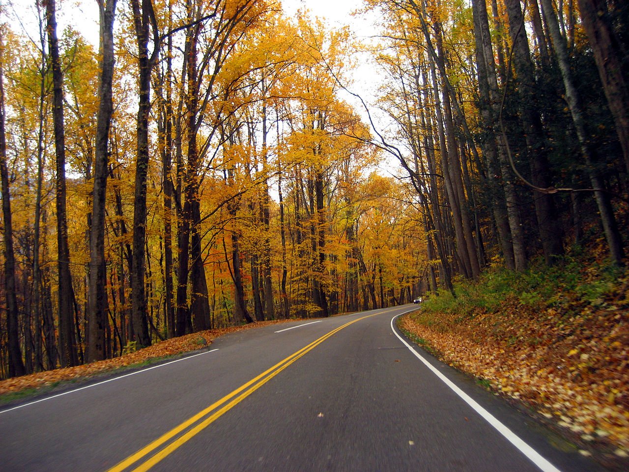 Great_Smoky_Mountains_National_Park_in_Autumn.jpg