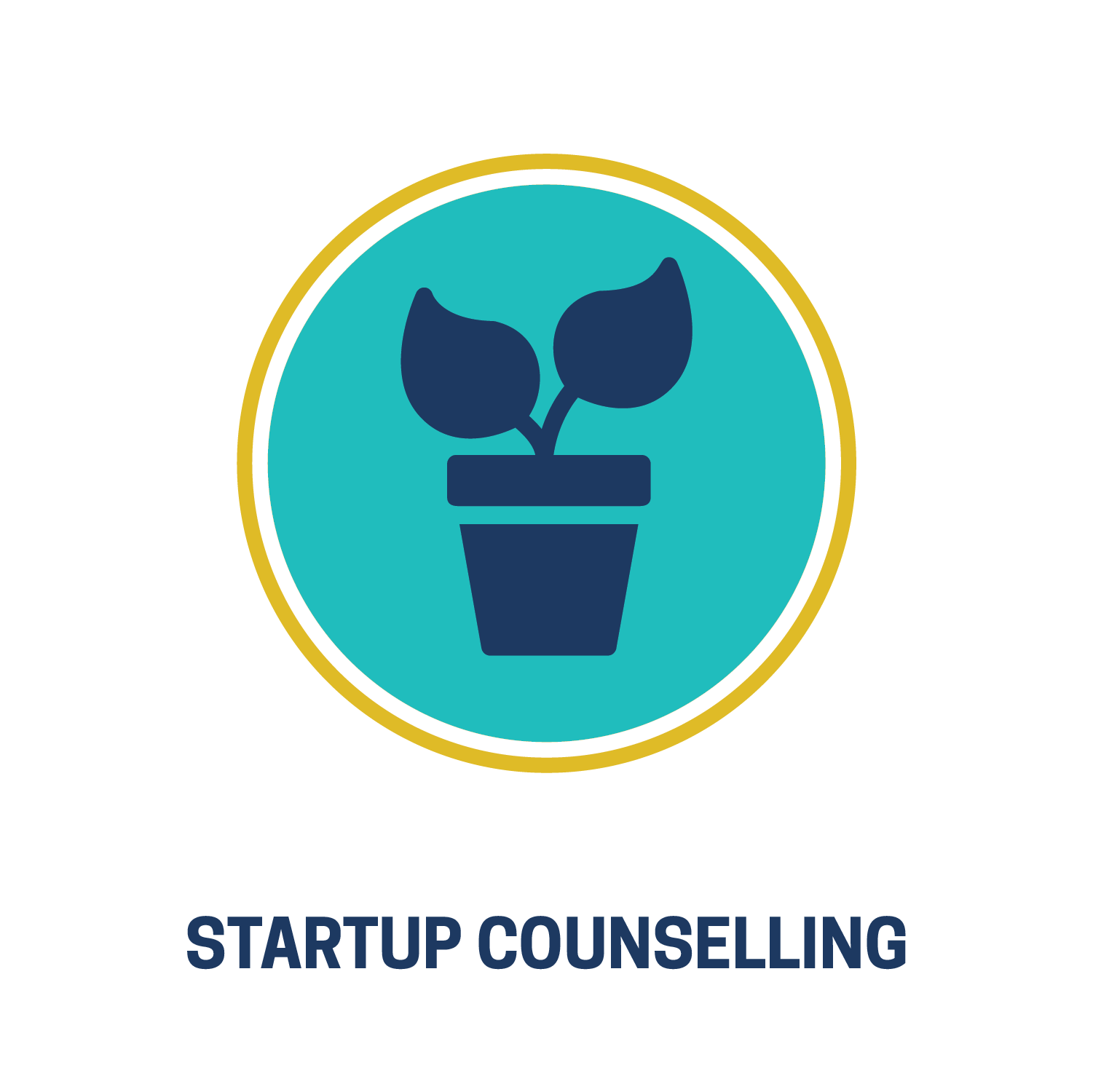 Icons_Startup Counselling.png