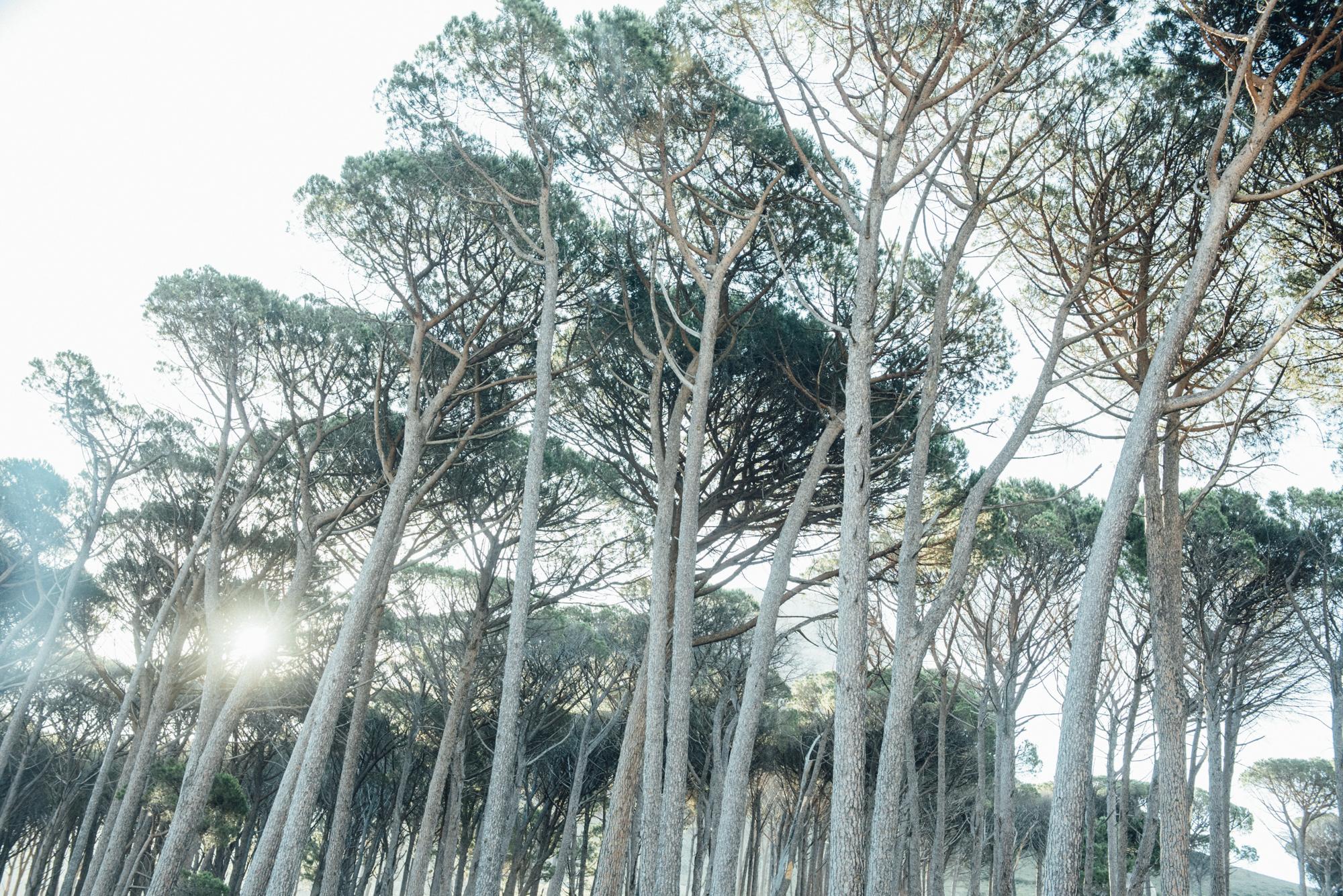 Capetown -24.jpg