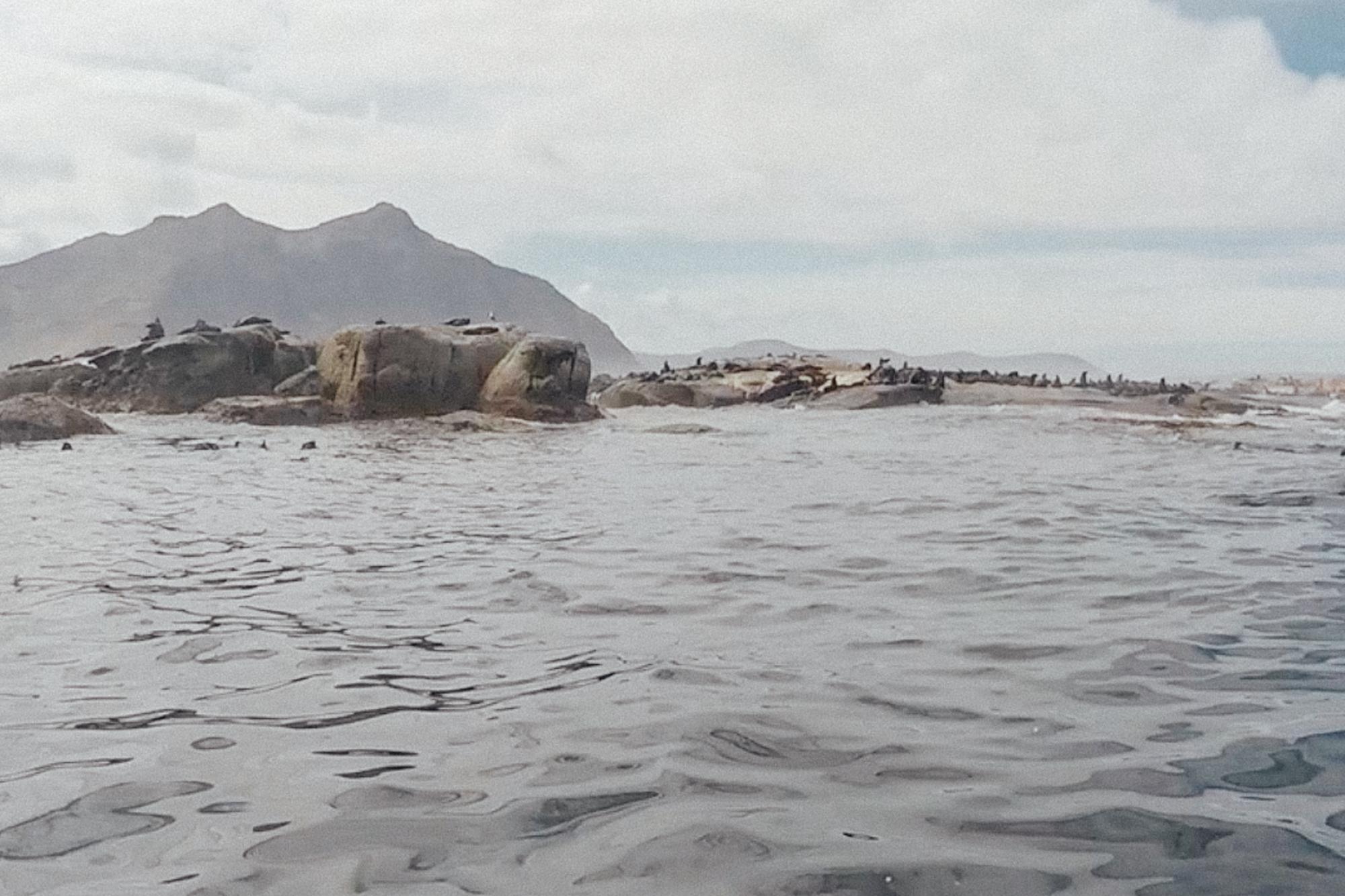 Capetown -58.jpg