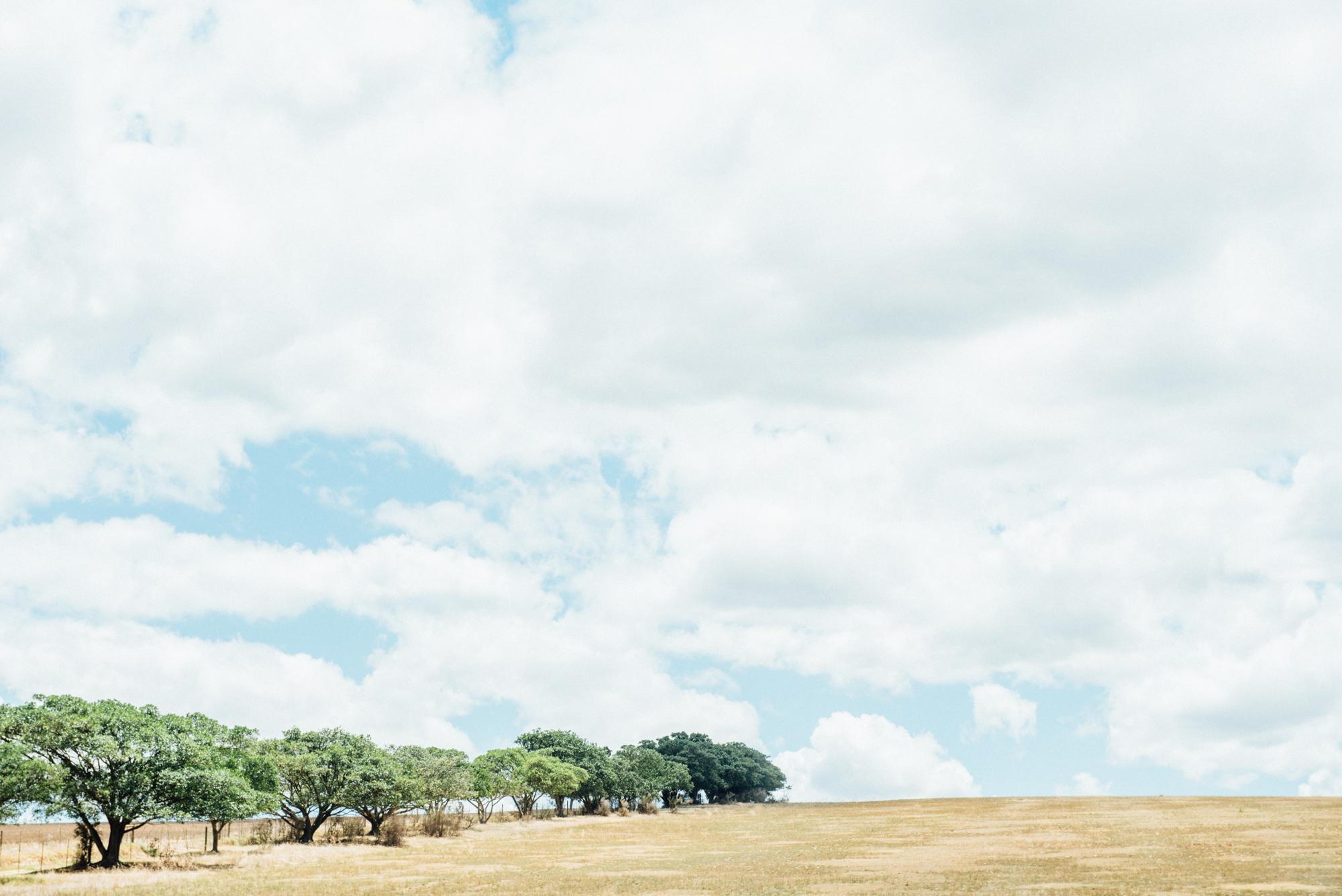 Garden Route Safari -5.jpg