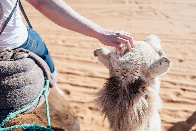 Sahara -42.jpg