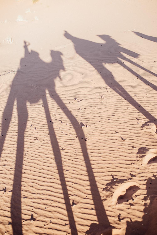 Sahara -45.jpg
