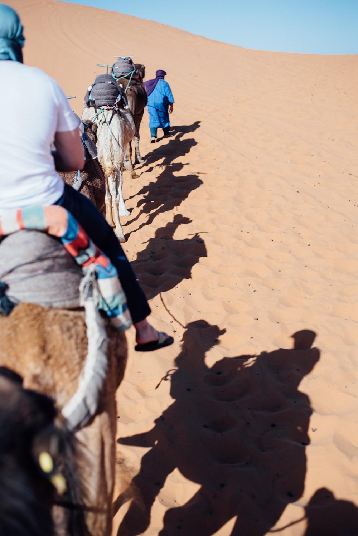 Sahara -70.jpg