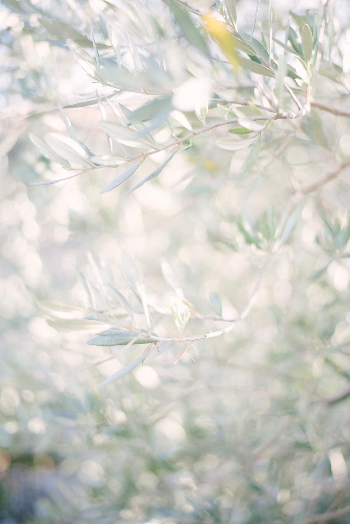 Eva Lin Photography Italy 2018 -15.jpg