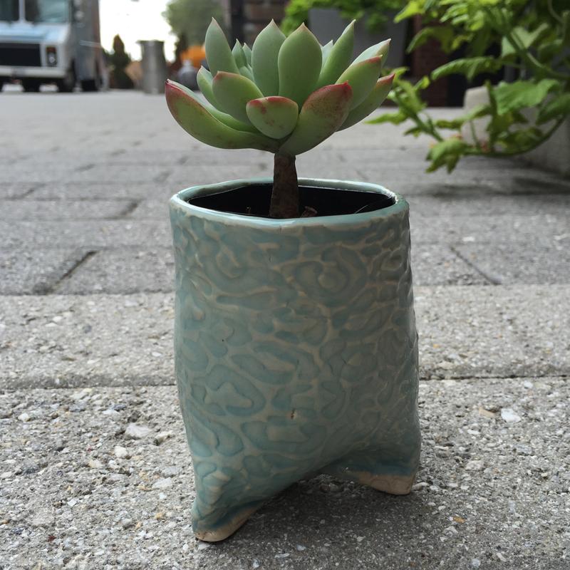 HandBuiltCup_Succulent_02.jpg