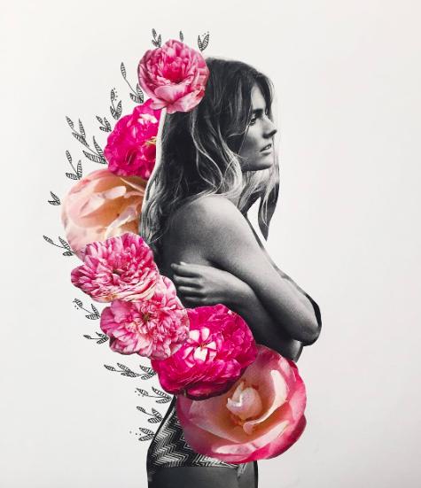 Kate Rabbit Collage