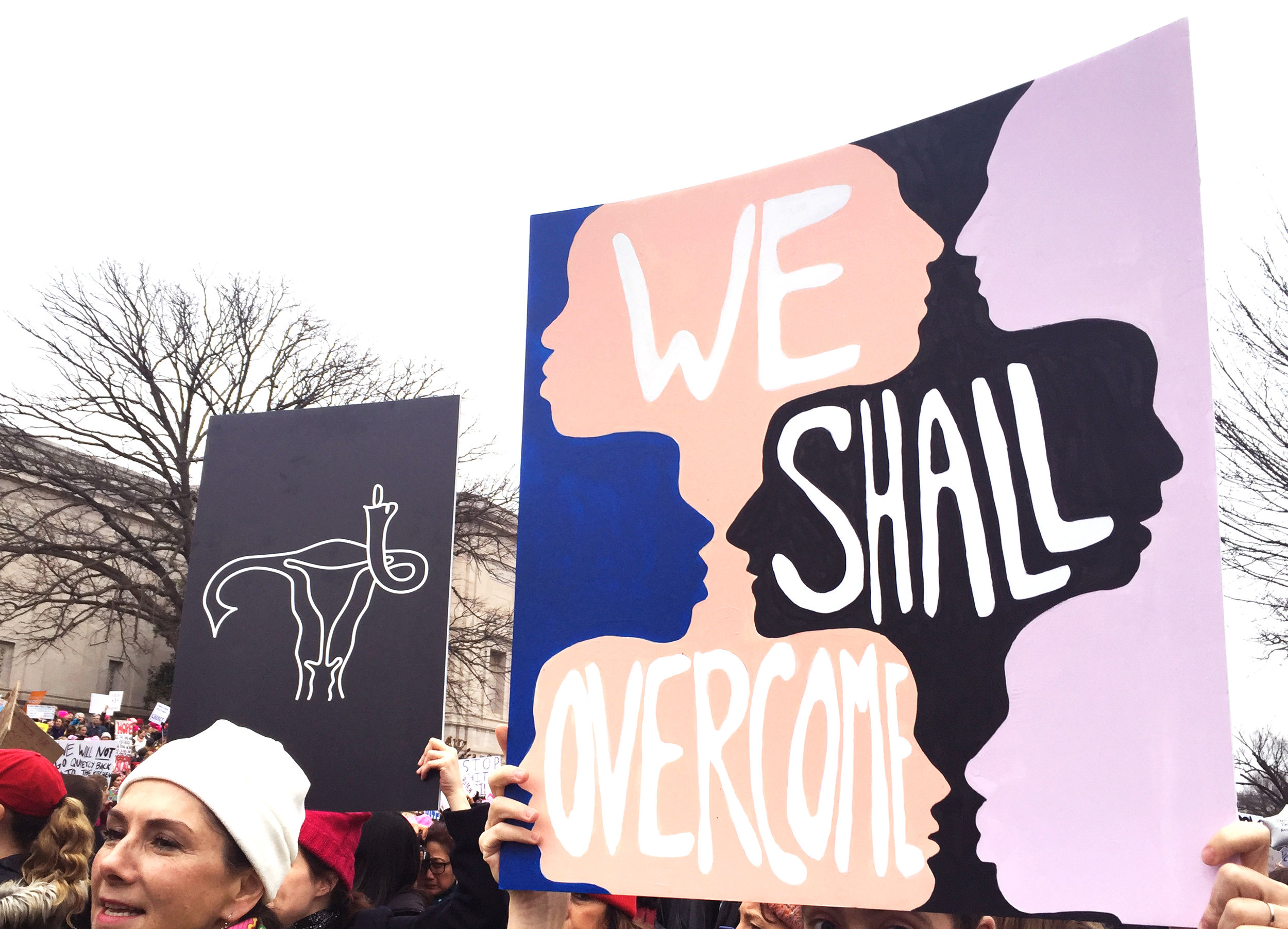 sign and photo by Kathryn Zaremba from the Women's March on Washington 2017