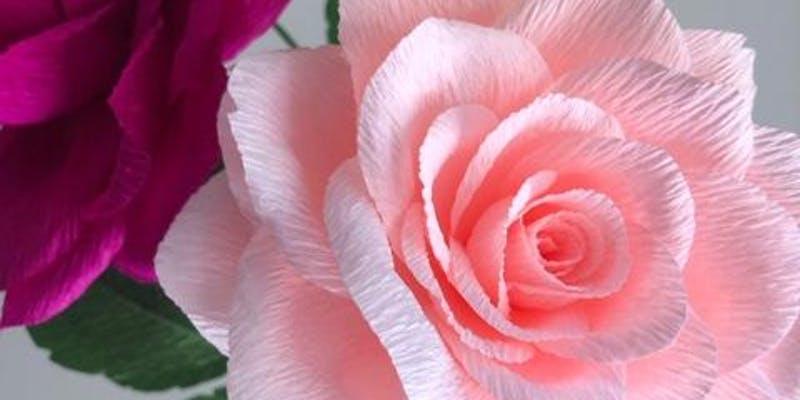 crepe_rose.jpg