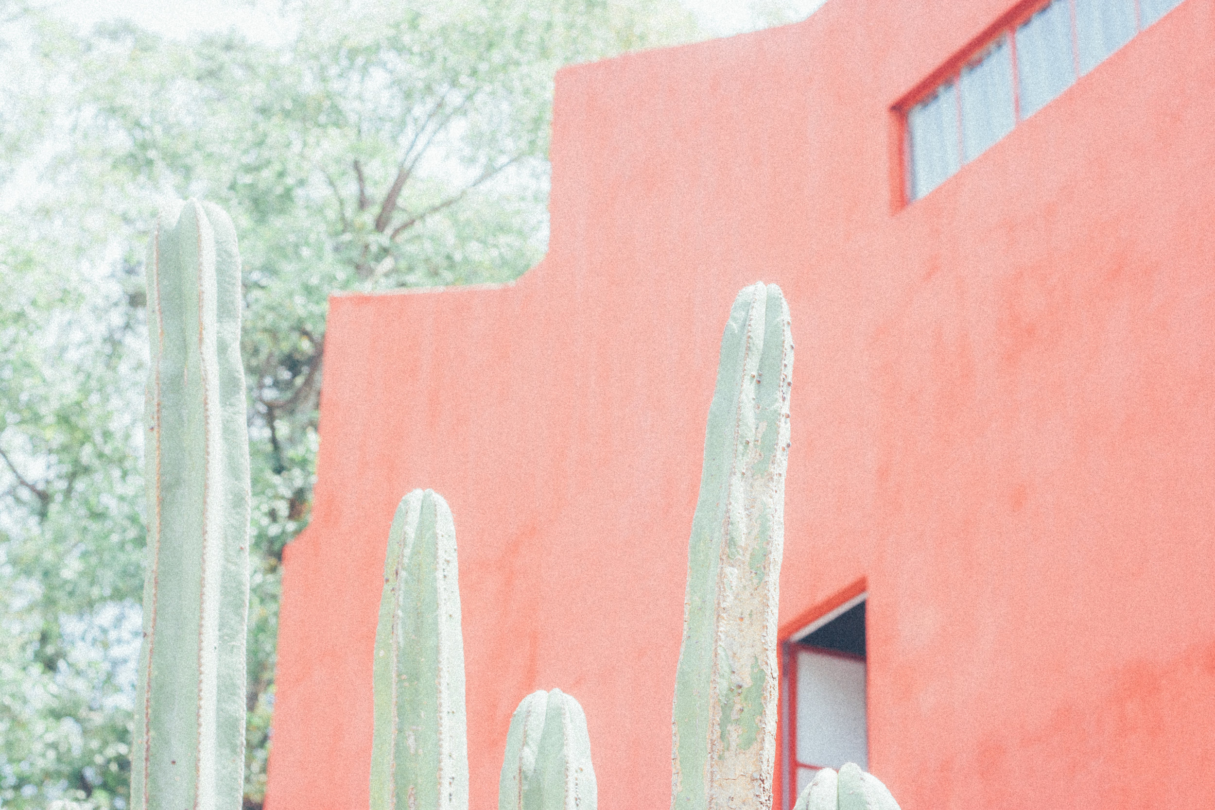 Mexico-3087.jpg