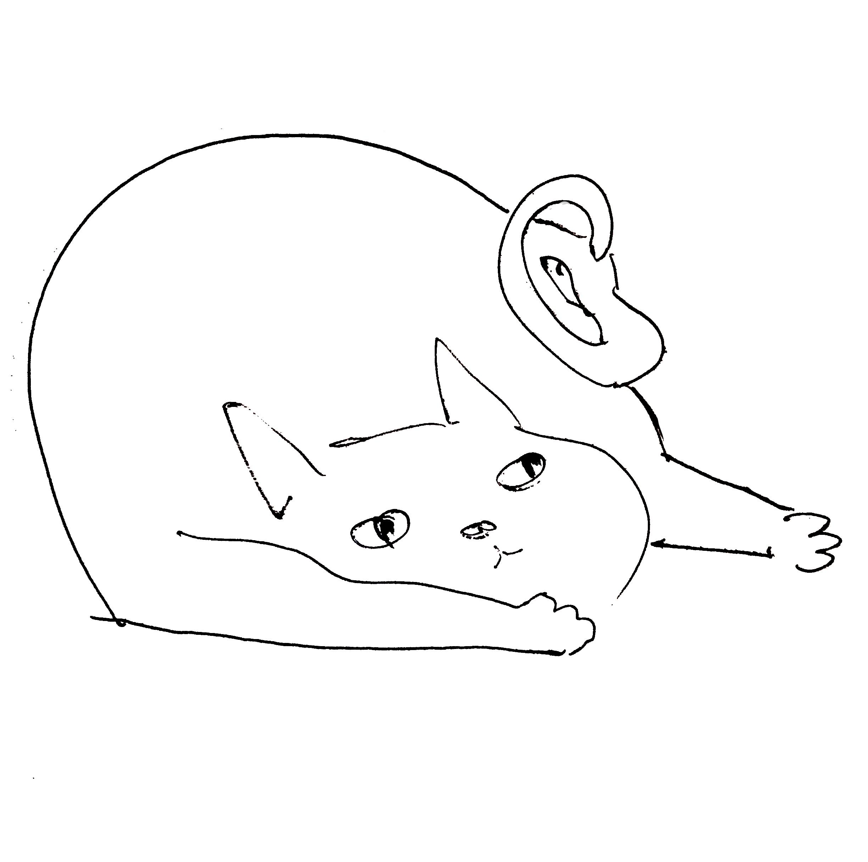_fatcat.jpg