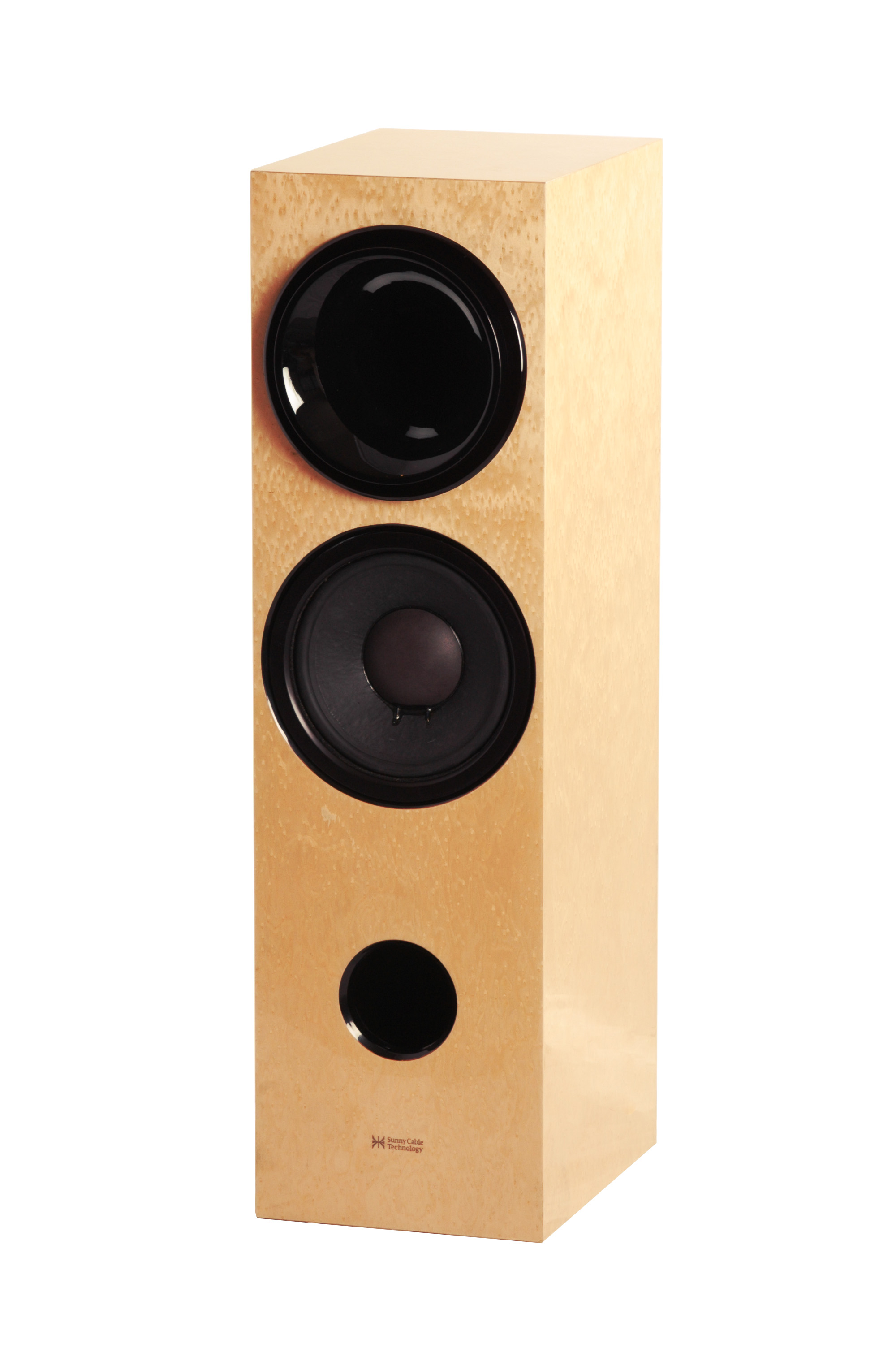 Sunny Cable Technology H2W10 Loudspeaker