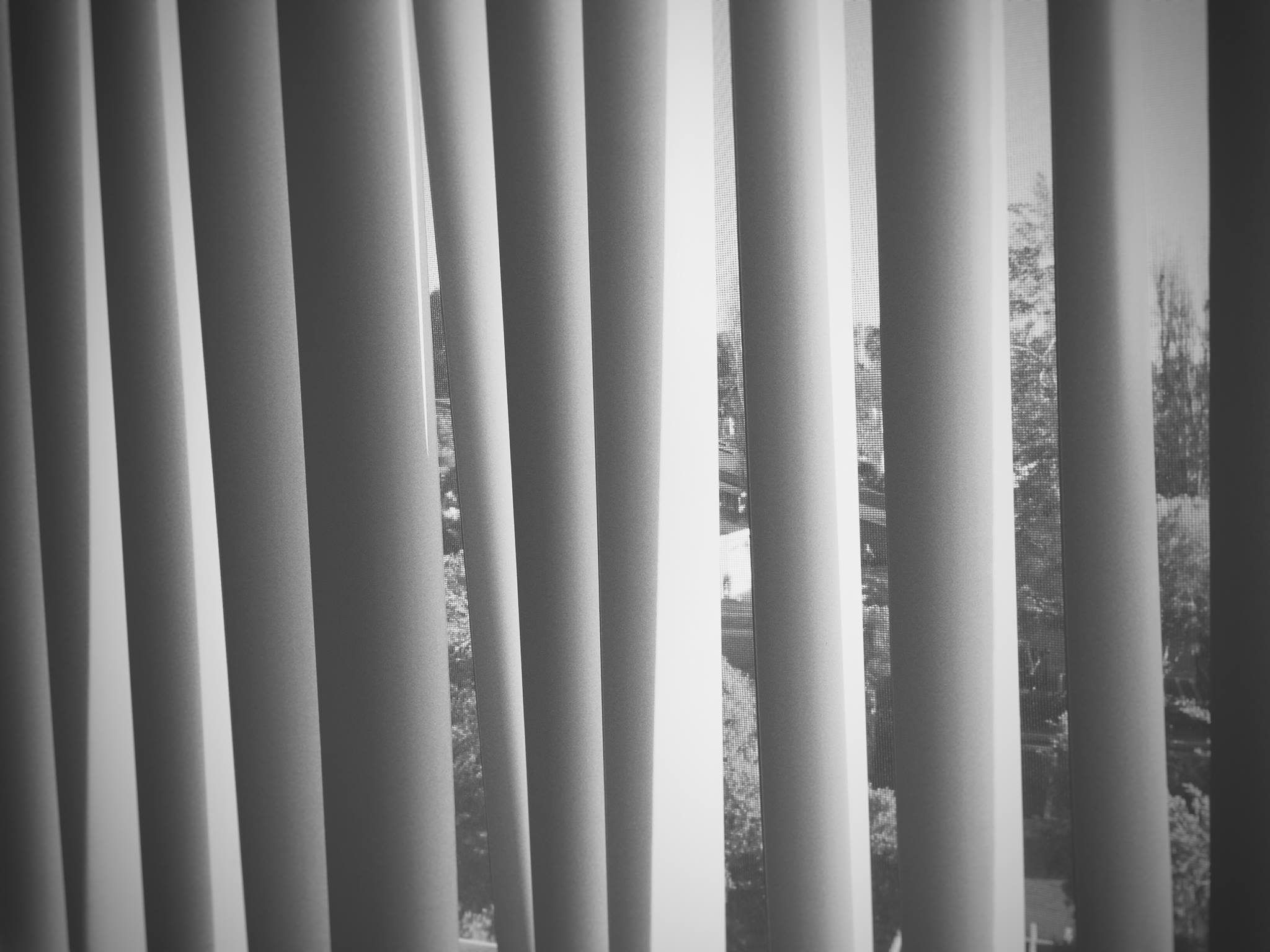 blinds_1.jpg