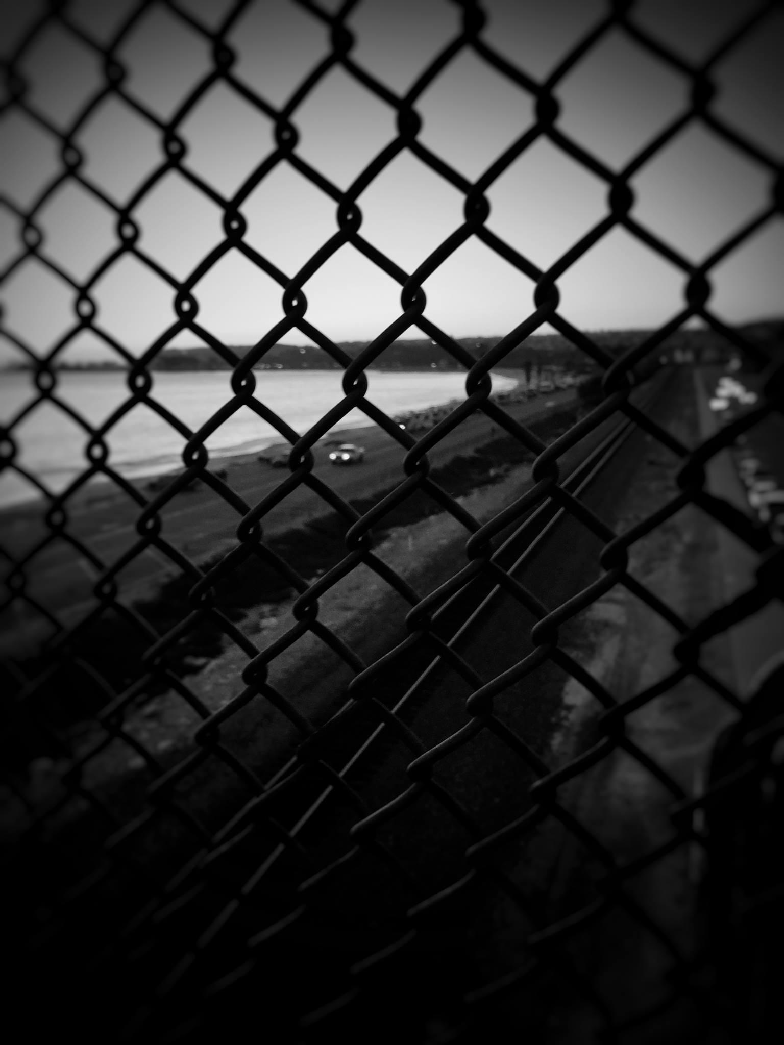 fence_1.jpg