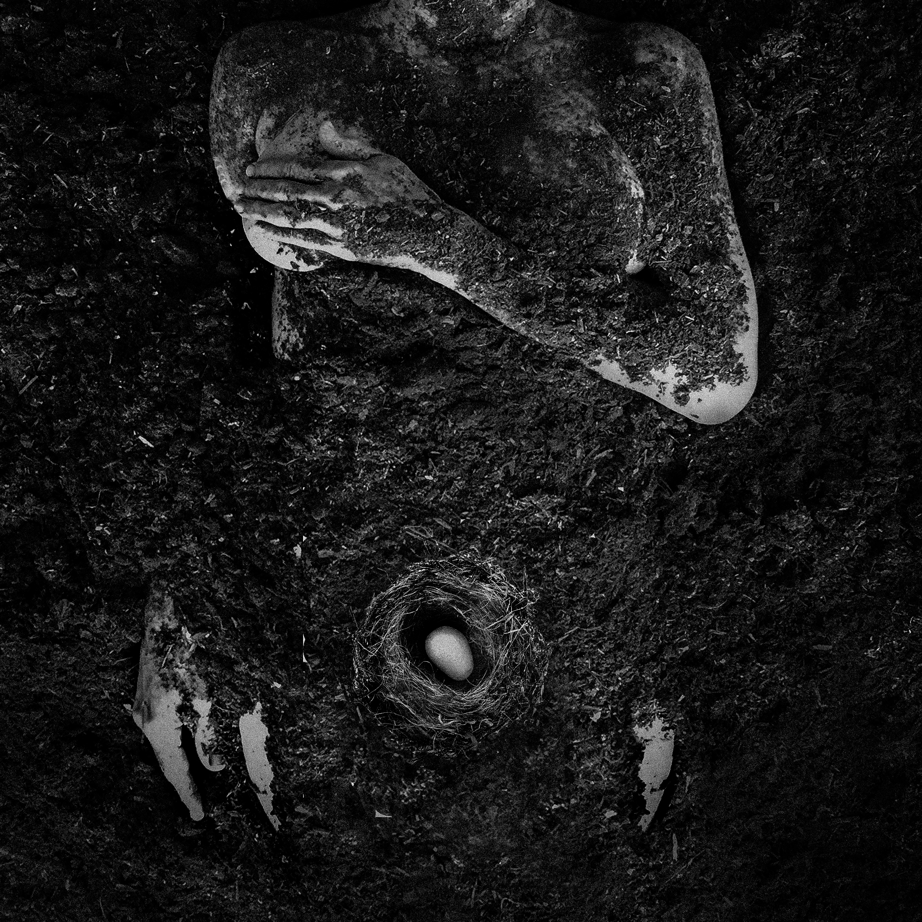 Dirt Body Nest_001_Nov_LR.jpg