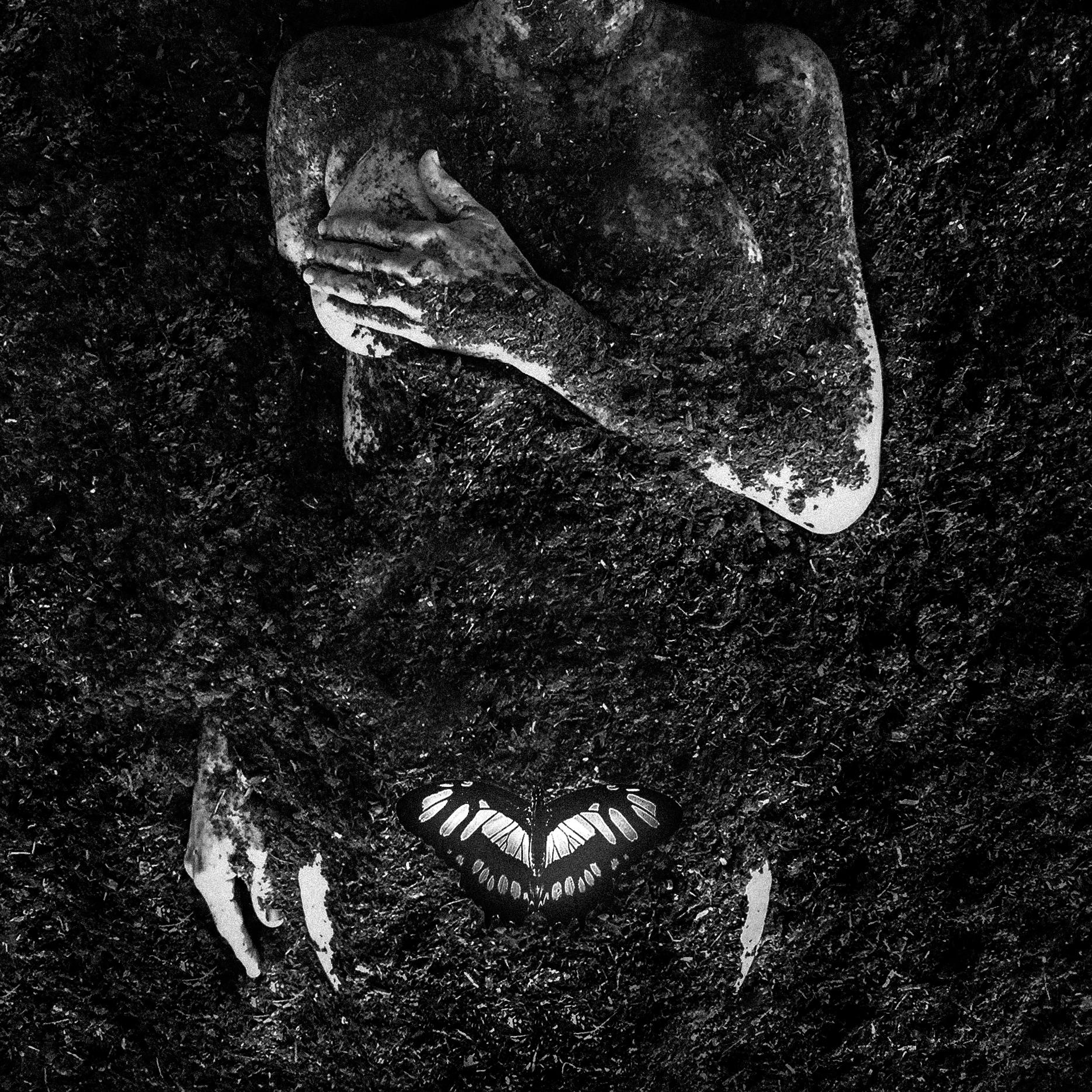 Dirt Body Butterfly_001_Dec_LR.jpg