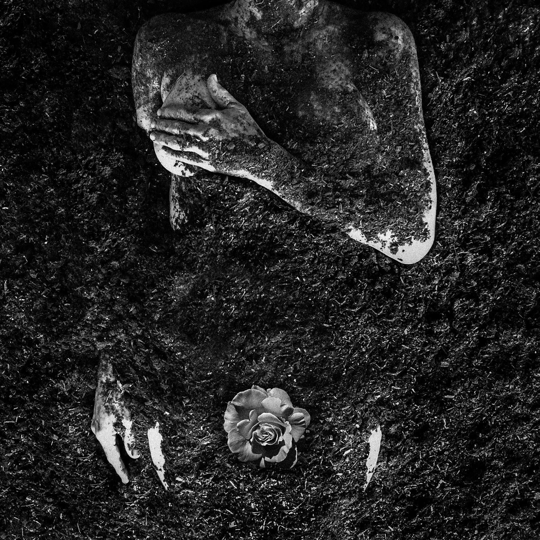 Dirt Body Rose_001_Nov_LR.jpg