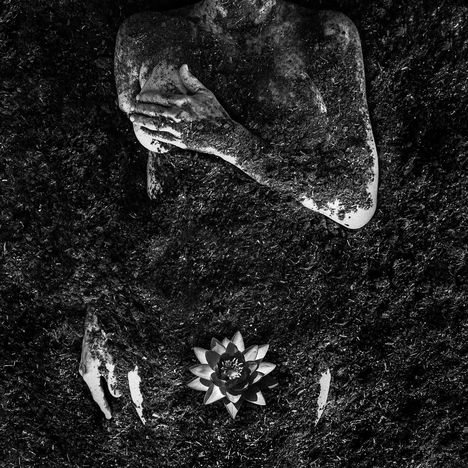 Dirt Body Water Lily_001_Nov_LR.jpg