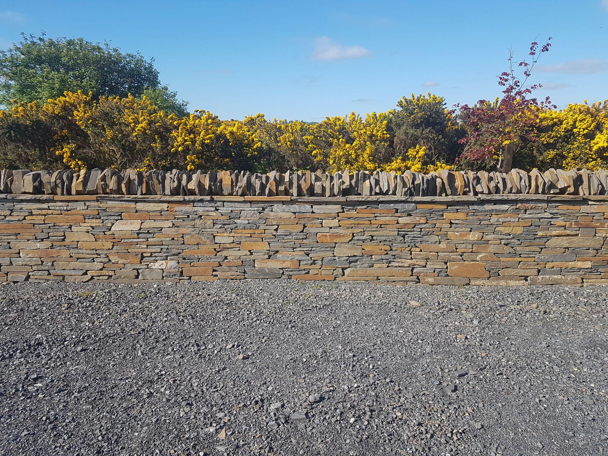 Caithness stone wall