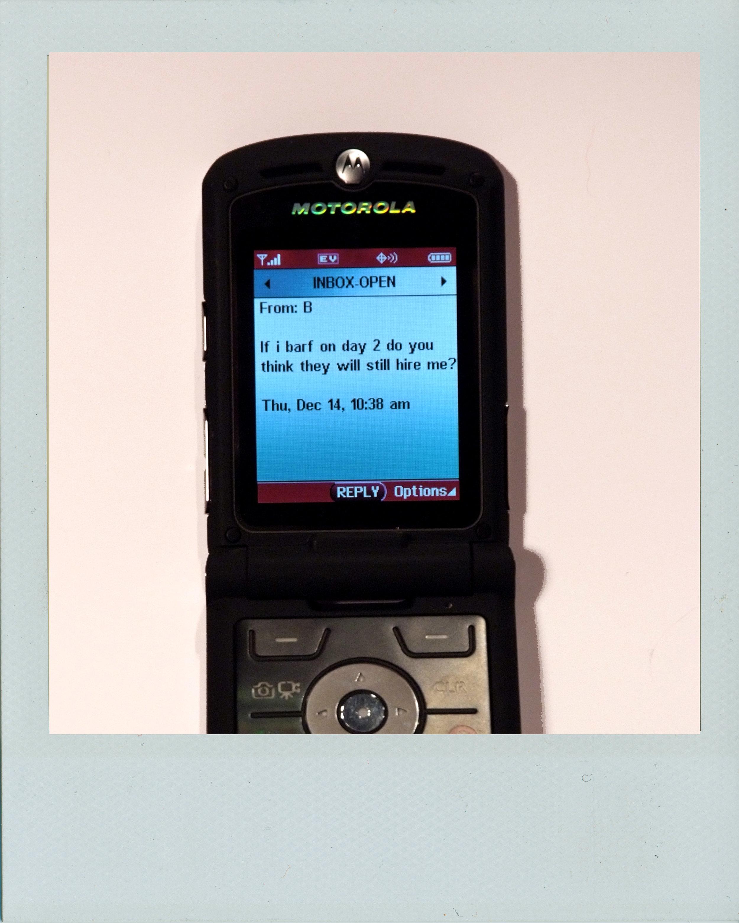text06.jpg