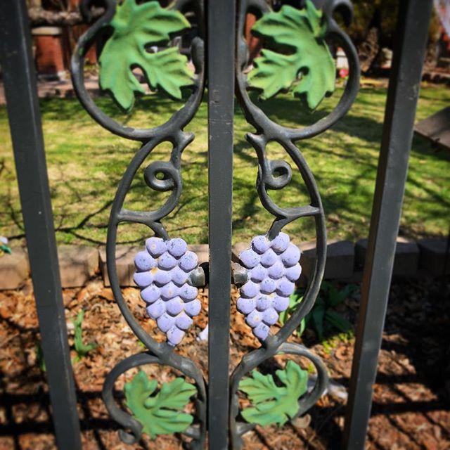 Iron grapes in Logan Square.