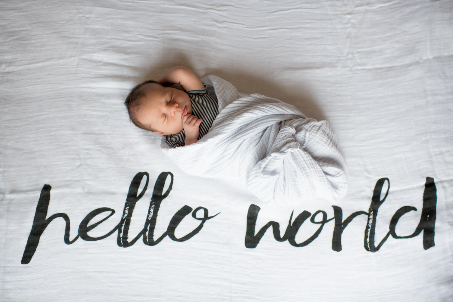 graham elliot {newborn 2.18}-0234.jpg