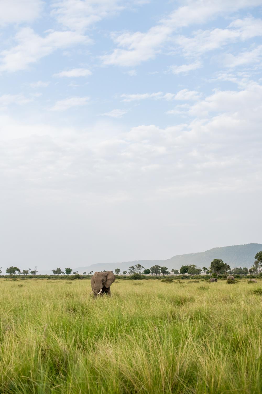 feb2018.africa-1086.jpg