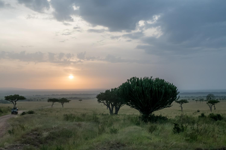 feb2018.africa-1031.jpg