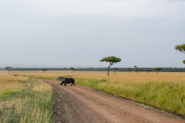 feb2018.africa-1039.jpg