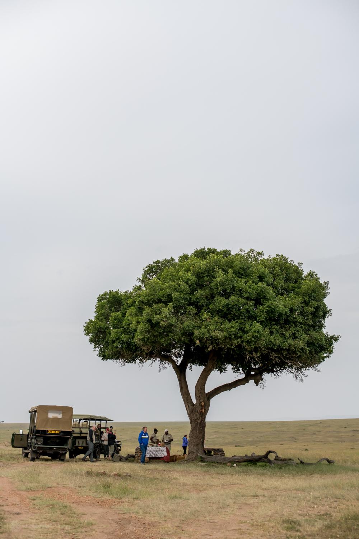 feb2018.africa-1168.jpg