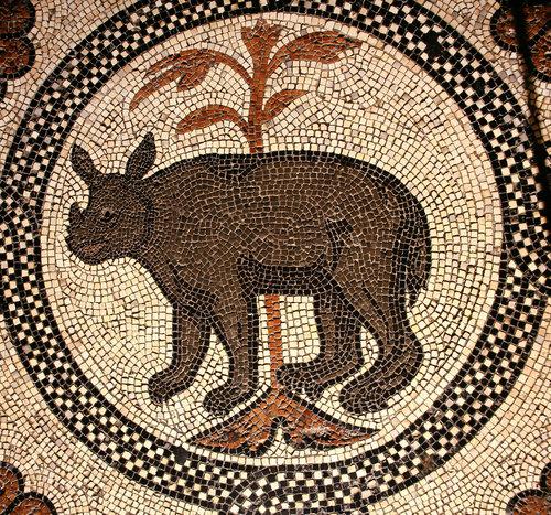 Rhinoceros, detail from mosaic floor, St Mark's Basilica, Venice, thirteenth century.  Photo ©Mark Smith