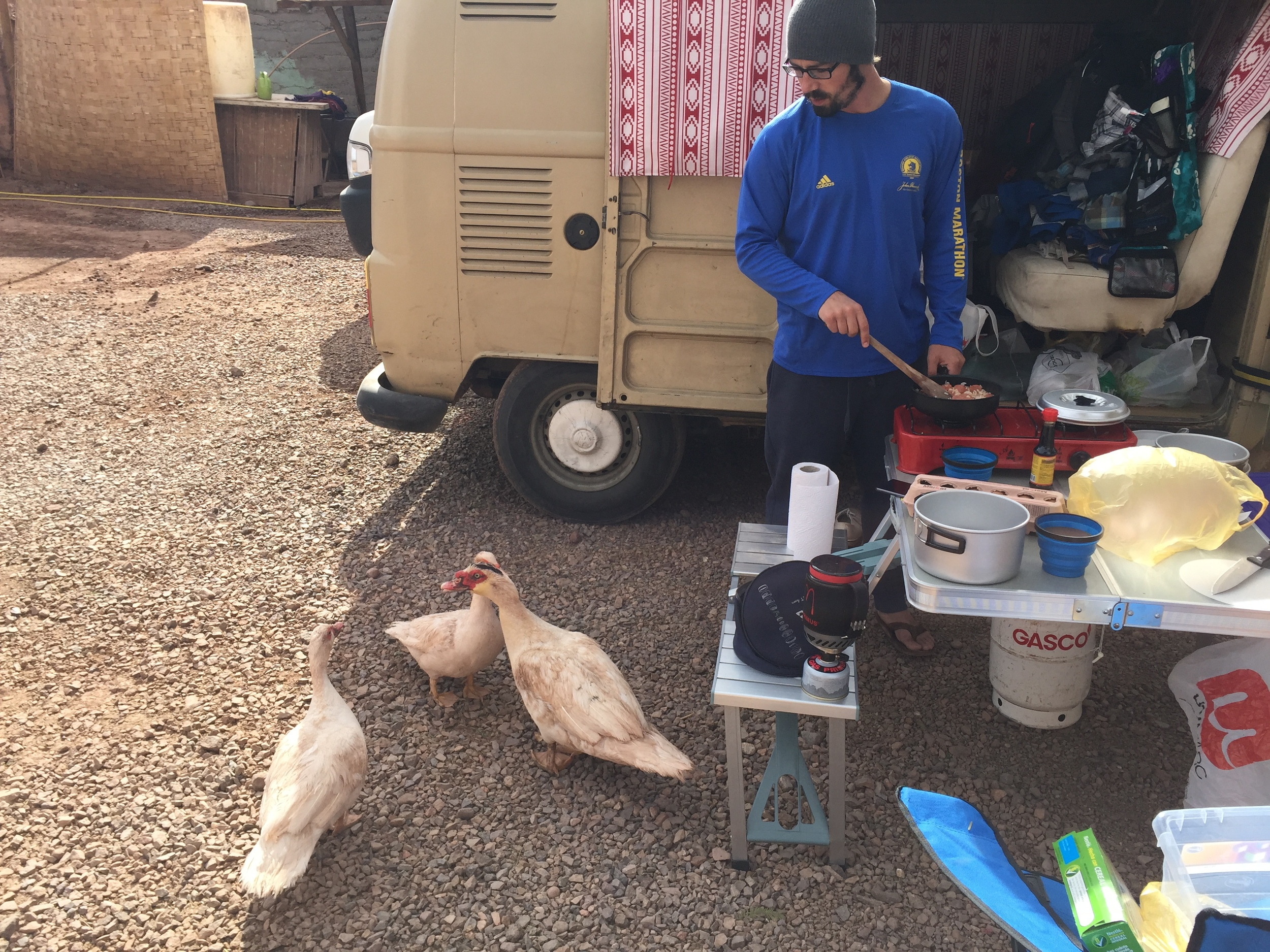 Hostal Puritama's seriously aggressive geese looking for a snack. Shan1 had to fight off the male with a plastic box.