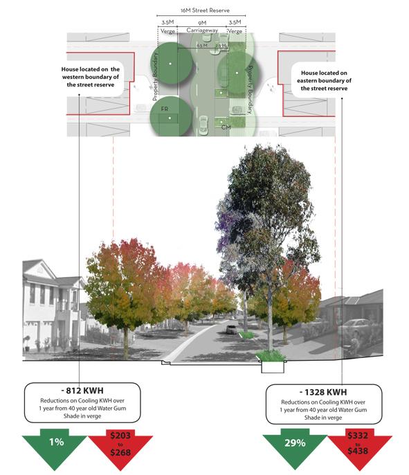 Benefits of street trees