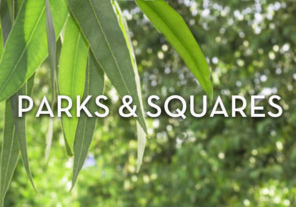 ParksSquaresIMAGE.jpg