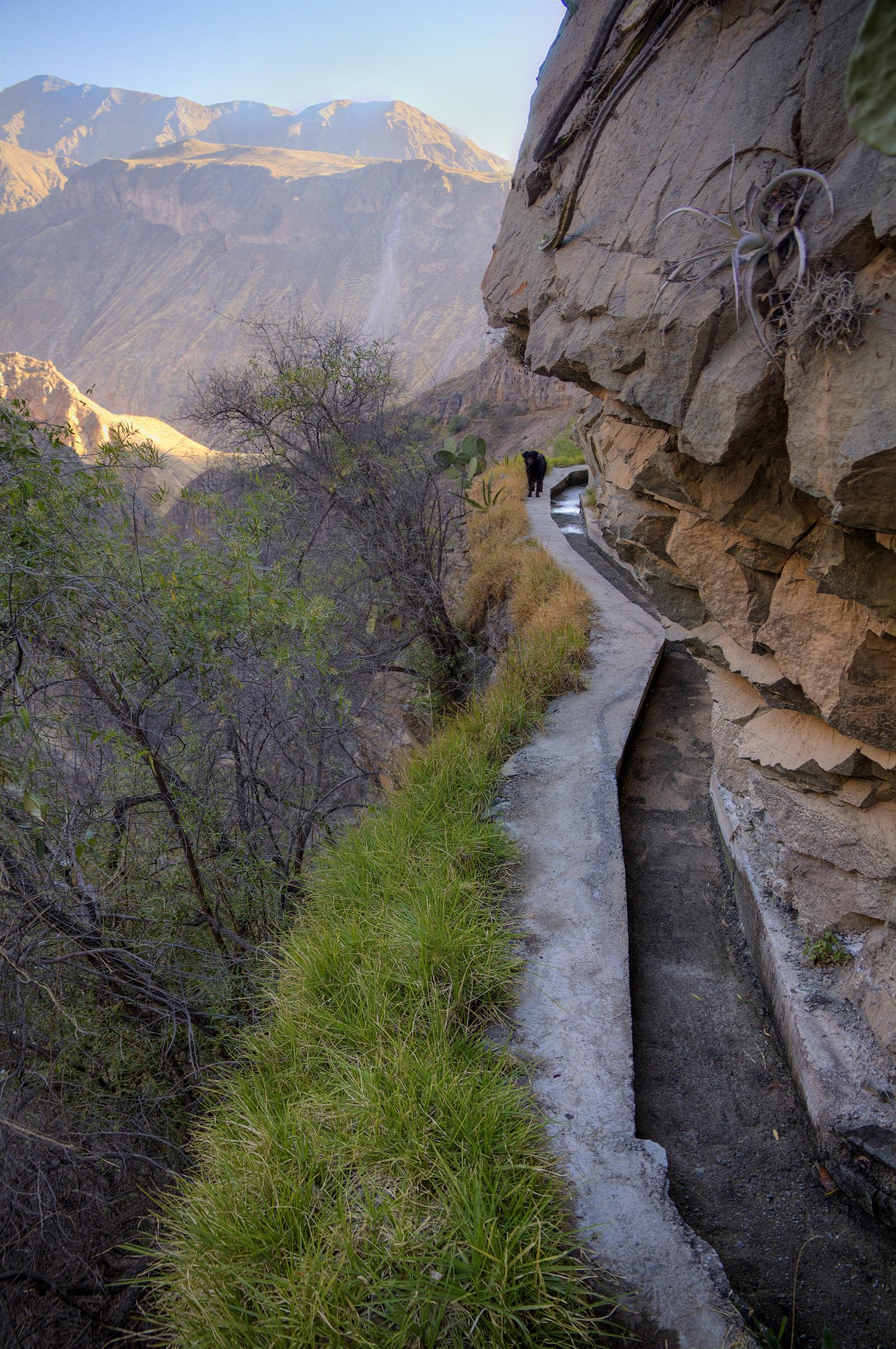 Larry Aqueduct.jpg