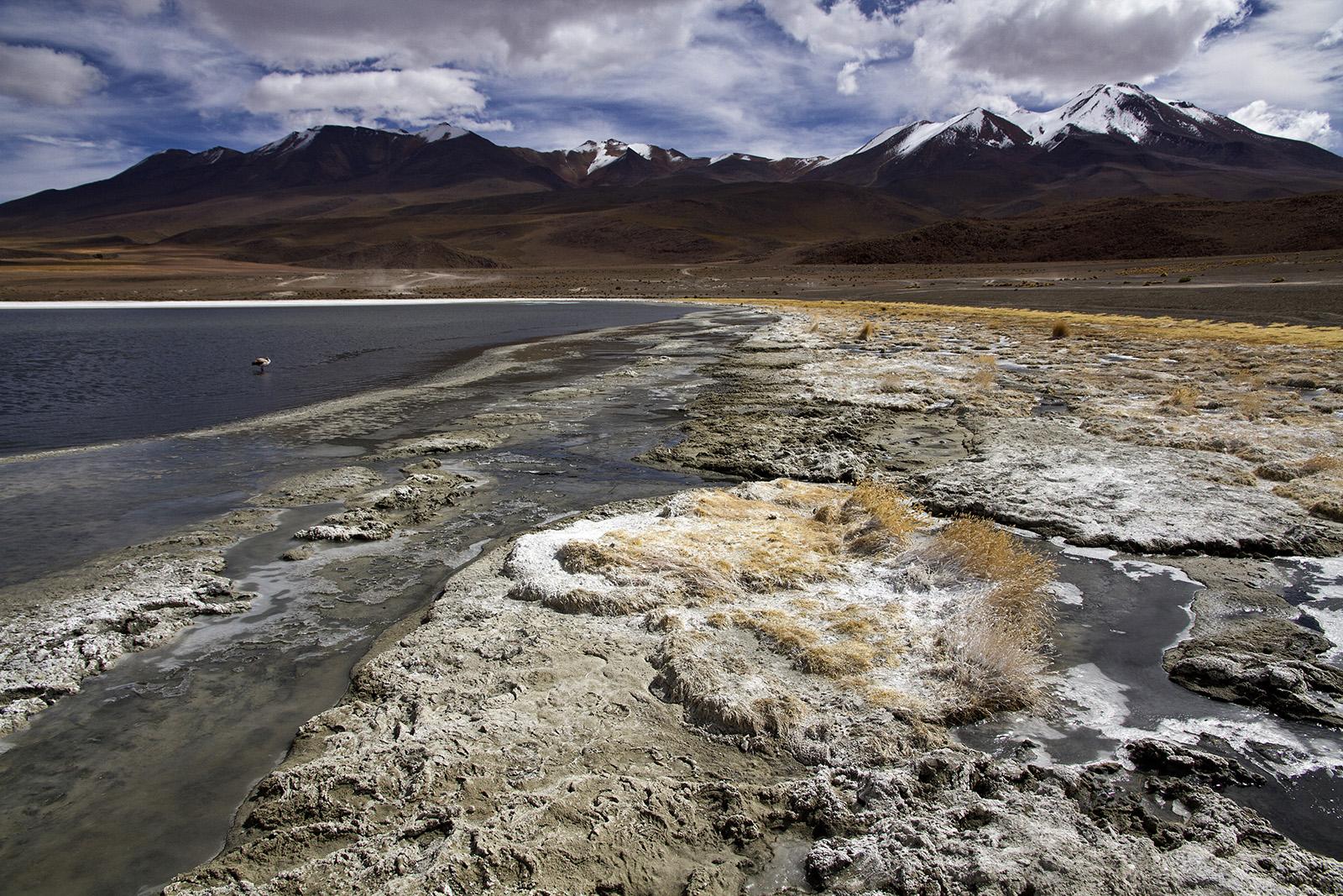 Laguna Colorada Salt.jpg