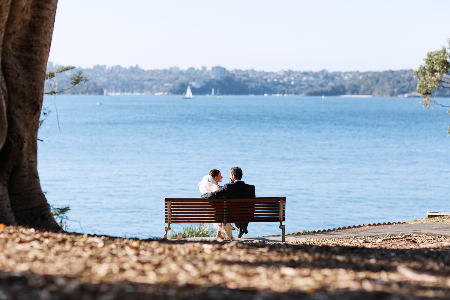 Newlyweds sitting on park bench overlooking Sydney Harbour at